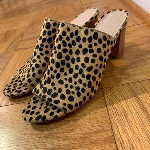 Loeffler Randall shoes